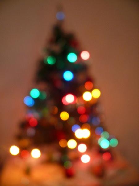 christmas_tree_184252